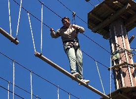 Go Ape Treetop Challenge